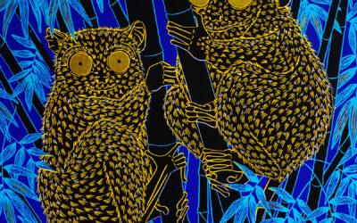 Exposition «Animalium» de Céline Clément – du 3 au 19 décembre 2020